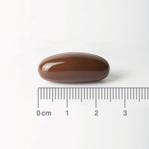 Sample of Soya Lecithin 1.200mg Lamberts capsule