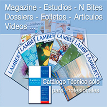 Publications: Communication and dissemination of information Lamberts Española
