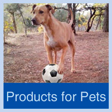 Lamberts supplements for pets