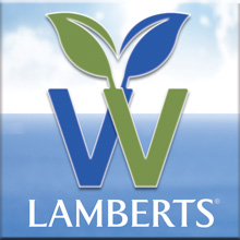 Lamberts vegan products